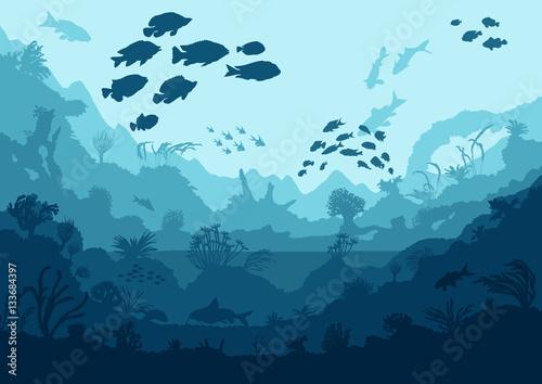 Fotografia coral reef and sea creatures