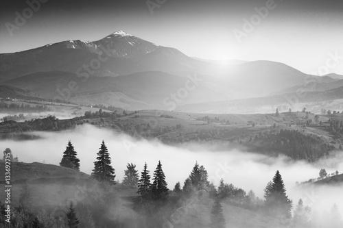 Obrazy czarno białe  krajobraz