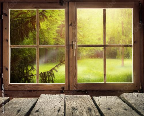 Holzhütte mit Ausblick auf eine Waldlichtung im Frühling/Frühsommer bei Sonnenschein