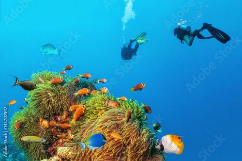 Staande foto Koraalriffen Two scuba divers exploring sea bottom