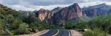 Beautiful Bush Highway Arizona...