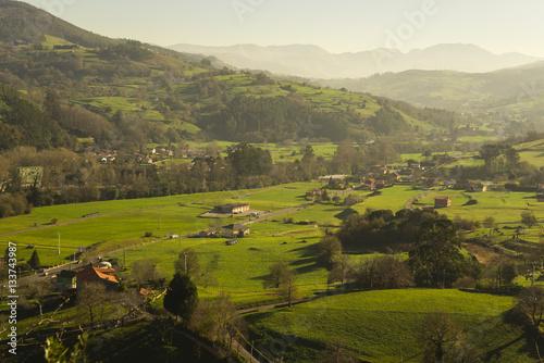Fotobehang Wijngaard Beautiful sunny green valley