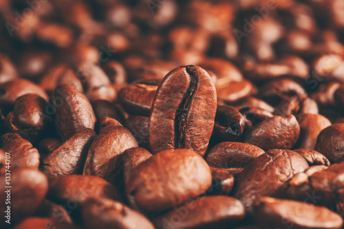 Fotomural roasted coffee beans, can be used as a background