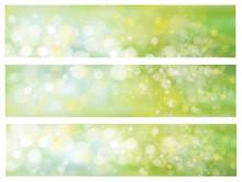 Vector Lights, Green,  Bokeh Backgrounds.