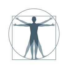 Cartoon Silhouette Vitruvian Man. Vector