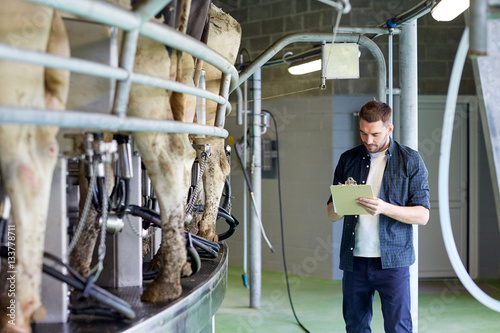 Fototapeta  man with clipboard and milking cows on dairy farm