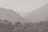 Czarno-białe tło krajobrazu - 133780135