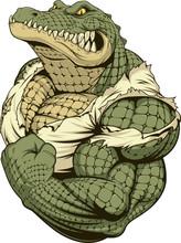Ferocious Strong Crocodile