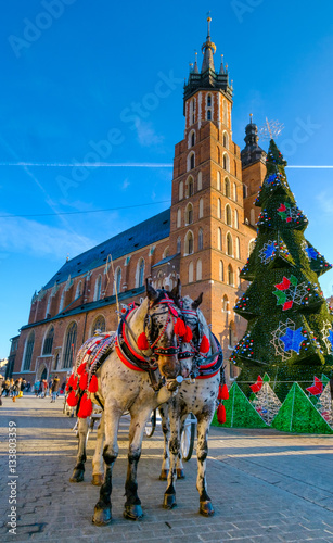 Fototapeta Carriages for riding tourists on the background of Mariacki cathedral at main square in old city of Krakow, Poland obraz