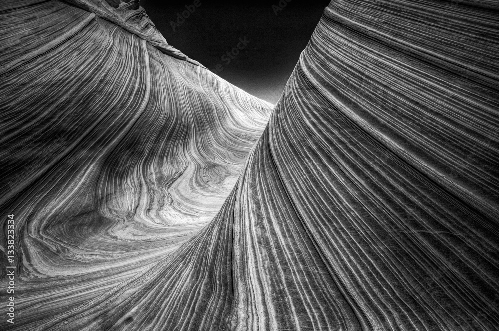 Fototapeta The Wave in North Coyote Buttes