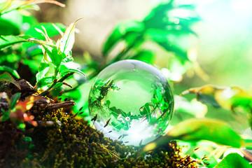 Earth World Globe Crystal on Green Mos