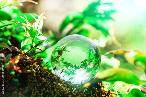 Fotobehang Natuur Earth World Globe Crystal on Green Mos