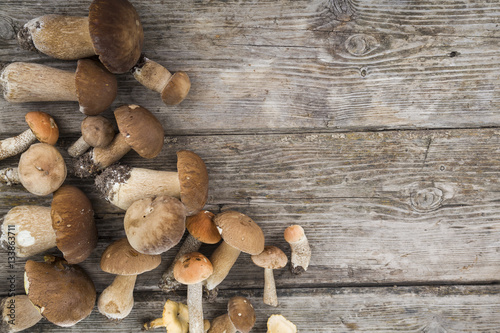 Obraz na plátně  Raw mushrooms on a wooden table. Boletus edulis and chanterelles