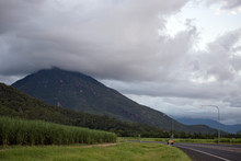 Sugar Cane And Cloud Covered Hill Top In Queensland