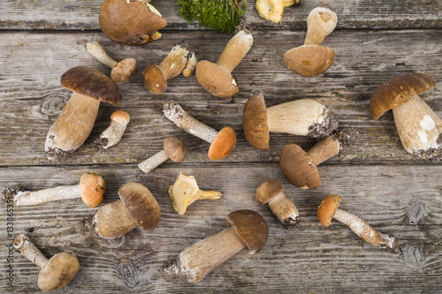 Photo Raw mushrooms on a wooden table. Boletus edulis and chanterelles