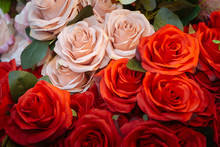 Fabric Pink And Red Roses