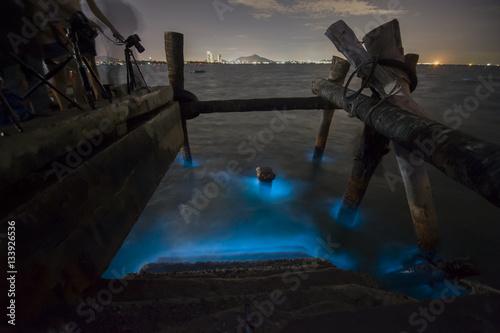 Marine Plankton glow in the dark in Thailand, bioluminescence Canvas Print