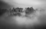 Czarno-biały krajobraz - 133939127