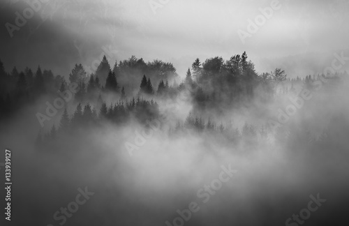 Foto op Canvas Bleke violet Black and white landscape