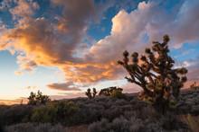 Sunset At Lovell Canyon Road Between Las Vegas And Pahrump, Neva