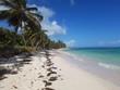 Praia Cabeza Del Toro em Punta Cana, Caribe