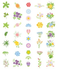 Colorful floral collection with flowers and leaves