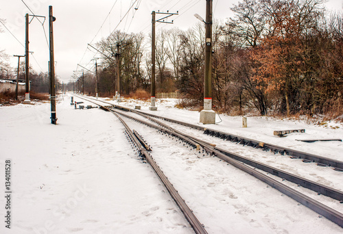 Fotografia, Obraz  railway receding into the distance in the winter