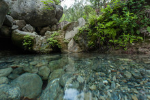 Closeup View Of The Creek In T...