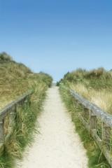 Fototapeta Weg über die Düne zum Strand