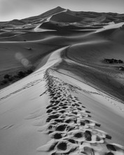 Footprints In The Sahara, Blac...