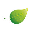 Think green ecology icon vector illustration graphic design