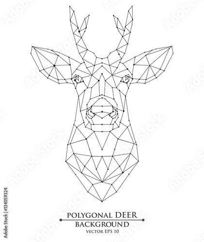 Vector polygonal young deer with small horns on isolated background