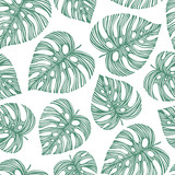 Tropical trendy seamless pattern with exotic palm leaves. Vector - 134077161