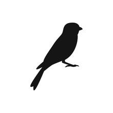 Sparrow Icon Illustration