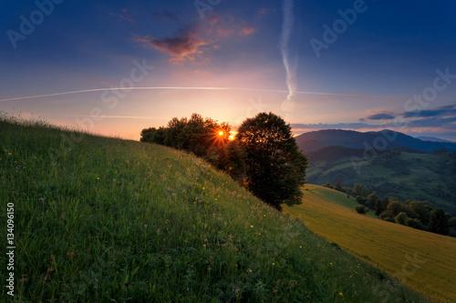 Foto auf Gartenposter Hugel Carpathian mountain meadow in the sunset rays.