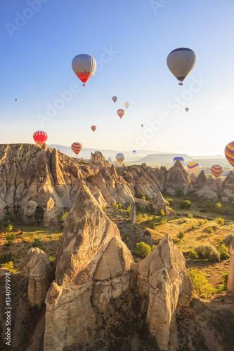Hot air ballons over Love Valley in Cappadocia, Turkey Wall mural