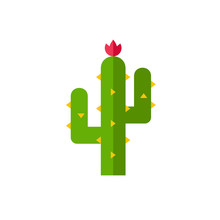 Thorny Cactus In Desert Icon