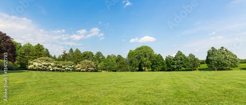 Photographie Fresh meadow landscape.