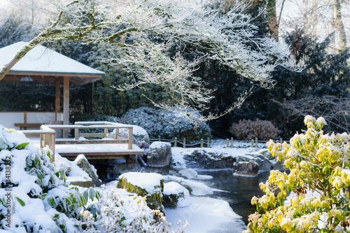 D Bayern Augsburg Winter Im Botanischen Garten Japanischer G