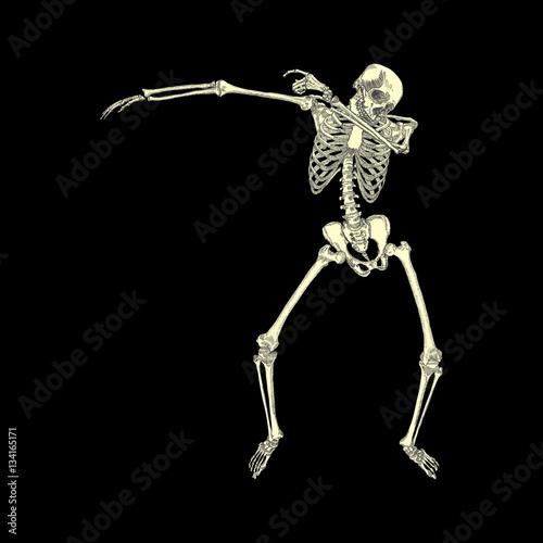 Human skeleton posing DAB, perform dabbing dance move