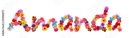 Flower Name Amanda Wallpaper Mural