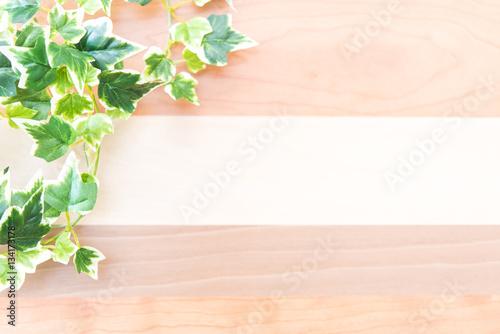 Fotografie, Obraz  植物と木目