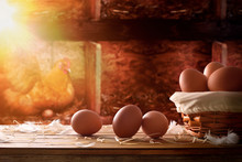 Freshly Picked Eggs In Basket Within A Henhouse Background