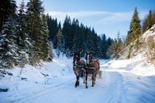 Winter Horseback Riding And Sl...
