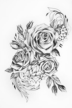 Sketch Of Beautiful Roses On A...
