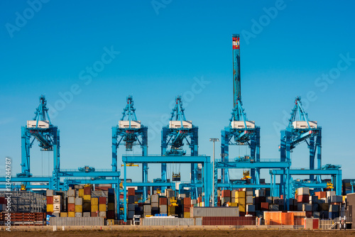 Foto auf Leinwand Rotterdam Large Cranes at Container Terminal in Harbour of Rotterdam, Netherlands.