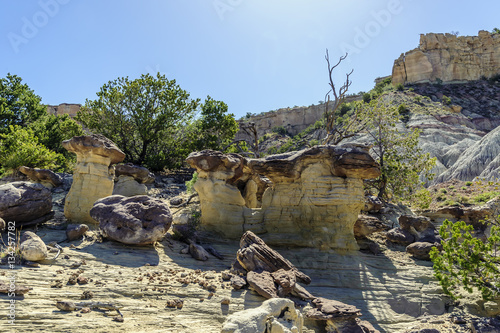 Fotografie, Obraz  Lybrook New Mexico Hoodoos