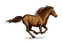 Running Horse Sketch For Equestrian Sport Design
