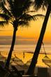 Hammocks With Golden Beach Sunrise - Panglao, Philippines
