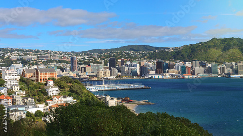 Staande foto Nieuw Zeeland Panoramic view of Wellington, New Zealand